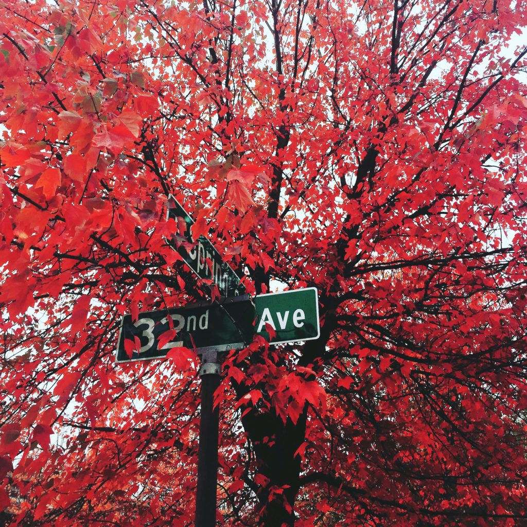 Seattle in the Fall